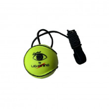 The Eyeball Training Sliotar