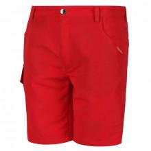 Regatta Soccer Shorts II Kids